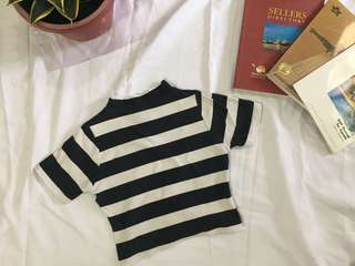 Striped cropped top turtle neck