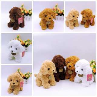 🚚 Toy poodle plush (PO)