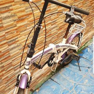 Phoenix foldable bike