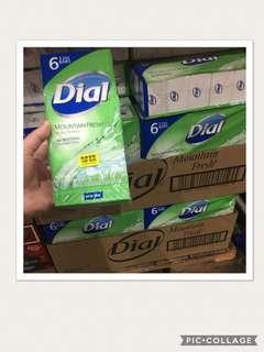 Dial Mountain Fresh ANTIBACTERIAL DEODORANT SOAP x 6 Bar soap