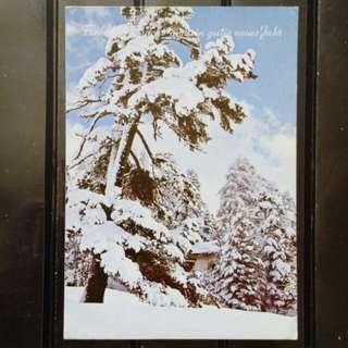 [lapyip1230] 奧地利 1980年 雪山 彩色明信片