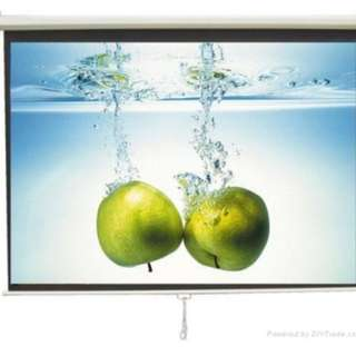 TruVision Projector Screen