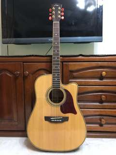 Fina Acoustic Guitar FD3150C