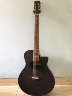 Gitar Rds 310