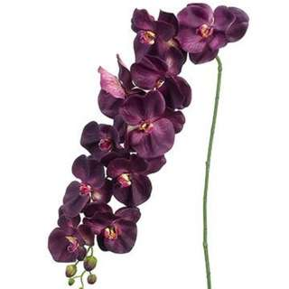 Artificial Large Phalaenopsis Orchid in Eggplant