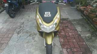 PCX Full Wrap Matte Gold