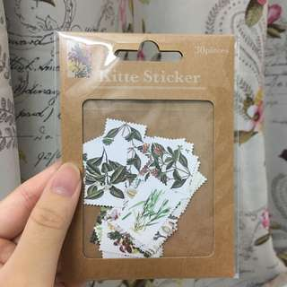 Vintage Botanical Kitte Stickers Paper Stickers