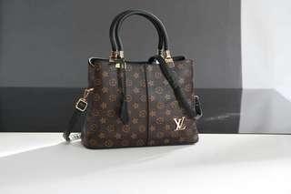 Louis Vuitton Bag LV tot
