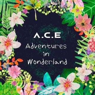 <<代購>>A.C.E-  A.C.E Adventures In Wonderland (Day/Night Ver.)