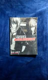 Wattpad book (Labyrinth Academy)