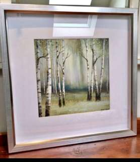 *****Gorgeous birch print purchased in Quebec City