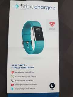 Fitbit Charge 2 Size L