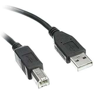 全新 USB cable Type A-B