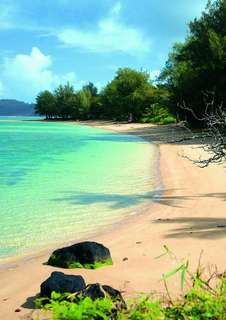 Discover the best beach in Philippines