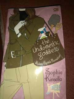 Sophie Kinsella Novel