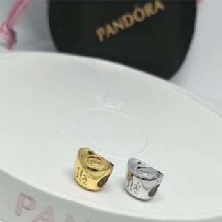 Money Catcher Pandora Charm