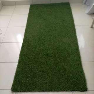 Grass Carpet (outdoor)