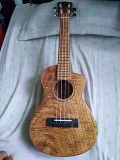 Guitar Master Ukulele