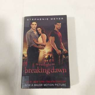 Breaking Dawn (Small)