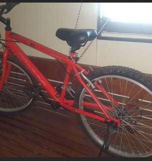 Aleoca bicycle.