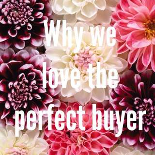 Musings On The perfect Buyer