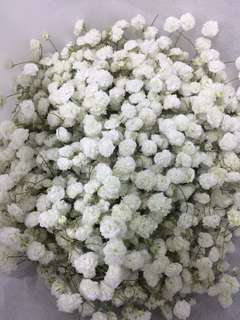 Bridal bouquet 💐 baby's breath