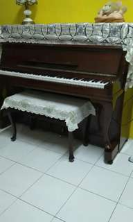 Piano Schubert Murah