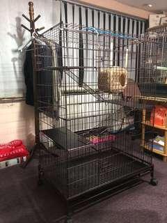 Cat cage UP$320