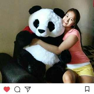 Oversized Panda Bear (2.5 Ft.)
