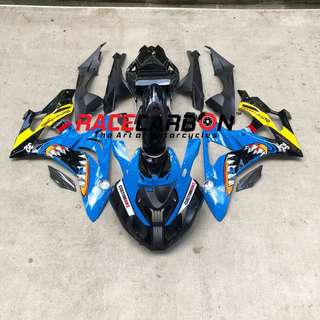 BMW S1000RR' 2009-2014 Fairing/Race Fairing for Sale/Pre-Order
