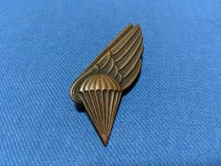 Latvian airborne wing