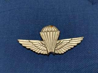 Algeria airborne wing