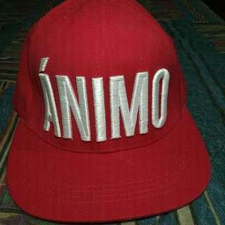 Animo High Cap