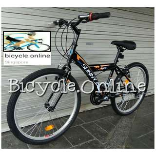 "Sunny 24"" MTB / a simple Mountain Bike ✩ 12 Speeds ✩ Brand new bicycle"