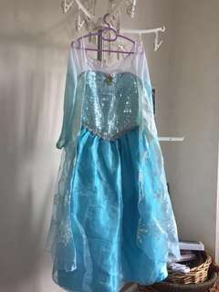 DISNEYLAND Elsa Dress / Frozen Costume