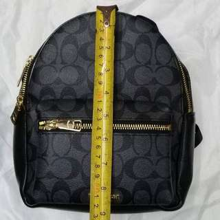 Coach backpack (small)