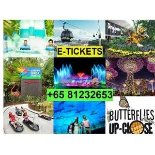 River safari / Snow city / Sea Aquarium / Universal studio / Adventure cove waterpark / Wings of time
