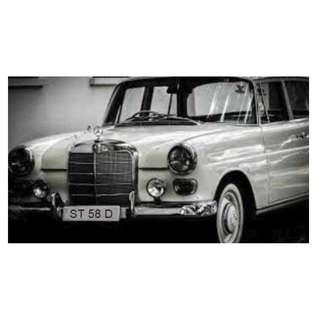 Vintage Plate ST 58