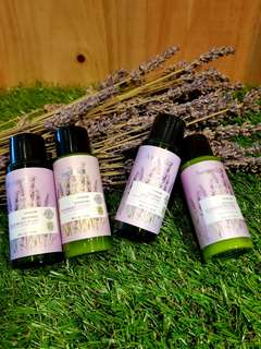 Lavender Body Wash Shampoo Body Lotion Conditioner