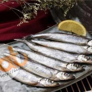 加拿大多春魚 | Canadian Capelin