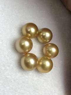 要濃金的12-13南洋金珠看過來!可買裸珠,可設計代鑲嵌!