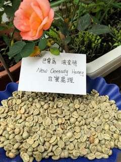 巴拿馬 Panama new century 白蜜處理 coffee bean