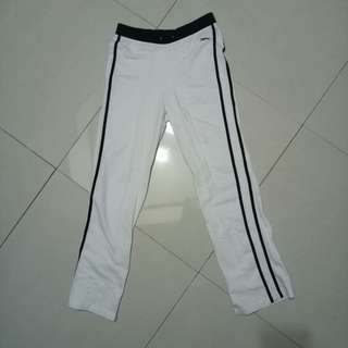 Jogging pants greyhound