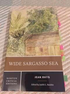 """""""Wide Sargasso Sea"""" by Jean Rhys (Norton Critical Edition)"""