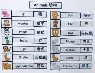 Bilingual Vocabulary Magnets_Animals