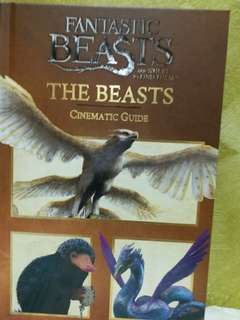 Fantastic Beasts And Where To Find Them Cinematic Guide:The Beasts