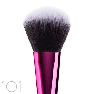 Lamica Brush Powder 101