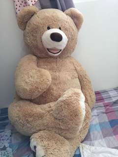 超大泰迪熊🐻