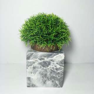 Marble plant holder or vase