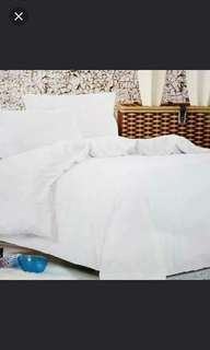 4in1 Plain Cotton